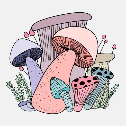 Champignons hebben de gezondheidsvoordelen van iedereen. vector
