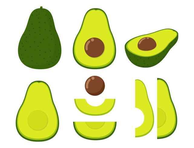 Vectorillustratie van vastgestelde verse die avocado op witte achtergrond wordt geïsoleerd vector