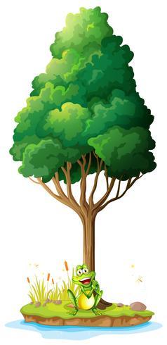 Een eiland met een kikker onder de boom vector