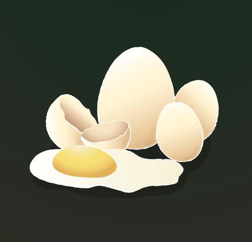 eieren geïsoleerd met zwarte achtergrond vectorillustratie vector
