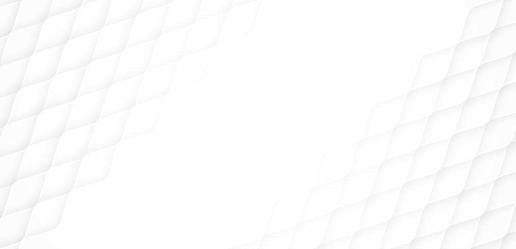Abstract. Geometrische curve lijn witte achtergrond, licht en schaduw. vector