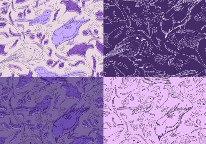 Naadloze paarse vogels Vector patroon Pack