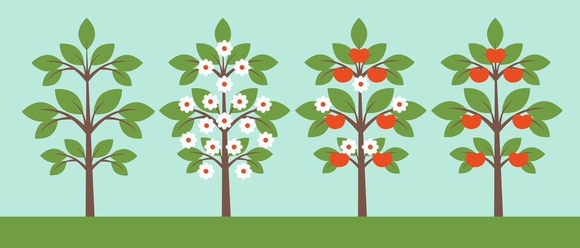 Verschillende bomencollectie vector