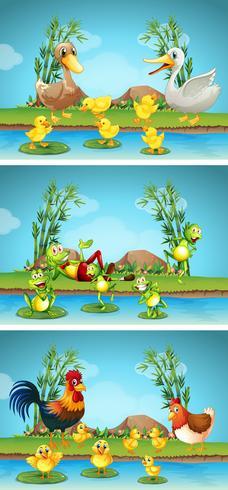 Drie scènes van boerderijdieren langs de rivier vector