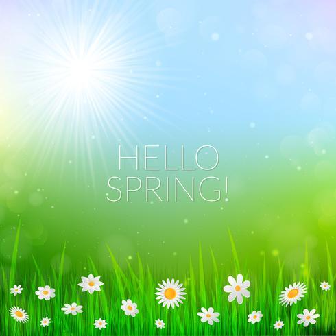 De lenteachtergrond met witte bloemen in het gras. vector