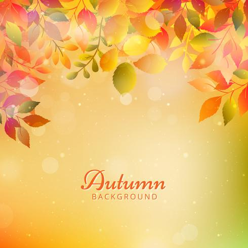 Herfst achtergrond met bladeren vector