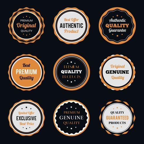 Retro vintage badges instellen vector