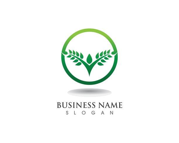 Boom groene mensen identiteitskaart vector logo templat