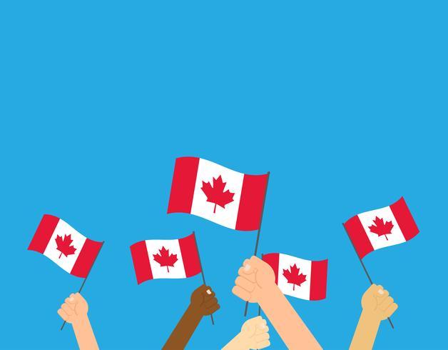 Vectorillustratieg handen die de vlaggen van Canada op witte achtergrond houden vector