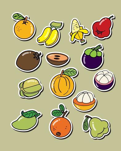 Set van vector fruit op de witte achtergrond