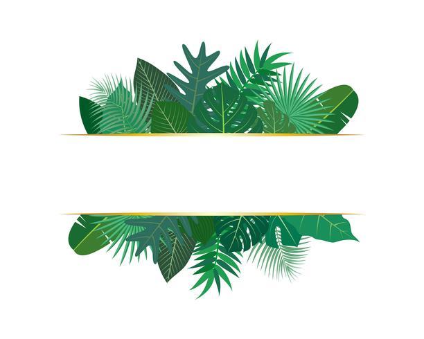 Vectorillustratie van verschillende exotische groene tropische bladeren met banner op witte achtergrond vector