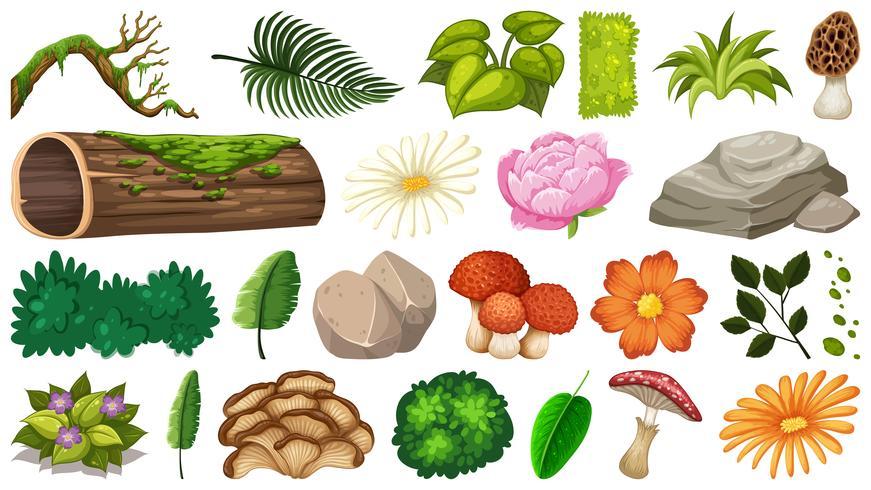 Set van natuur-object vector