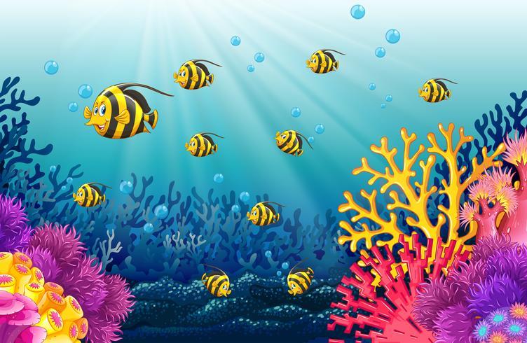 Veel vis onder de zee vector