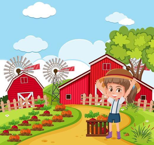 Een boer oogst vetgetable vector