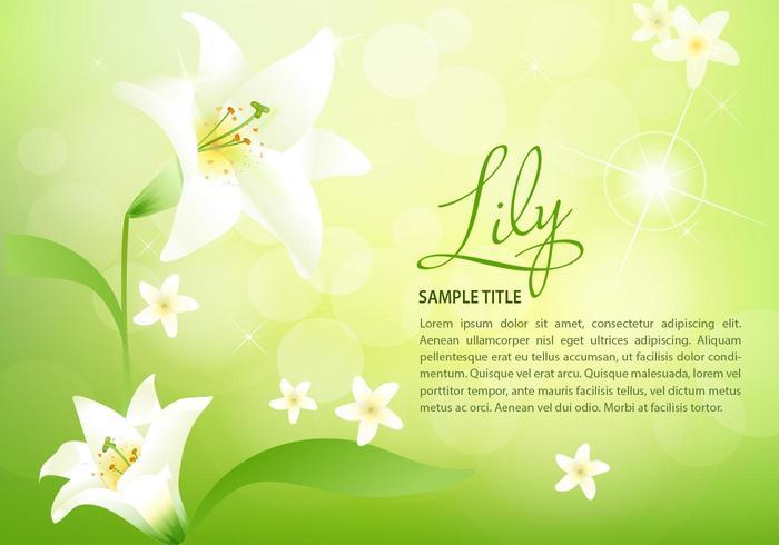 Lente Lily achtergrond Vector