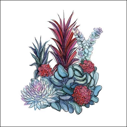 Boeket van vetplanten. Bloemstuk voor ontwerp. Waterverf. Graphics. Vector. vector