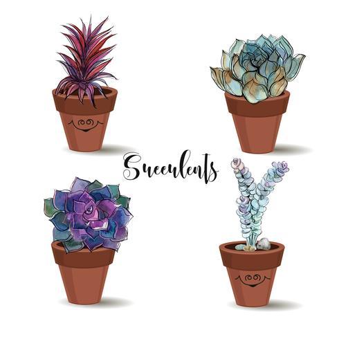 Vetplanten in kleipotten. Set. Afbeeldingen met waterverf. Vector. vector