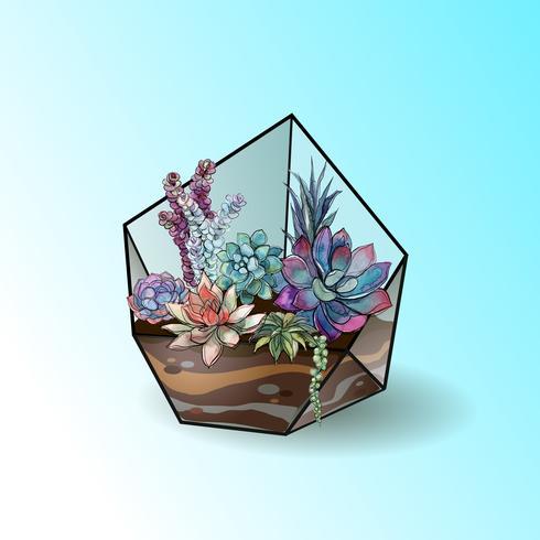 Bloemstuk van succulents in een geometrisch glasaquarium. Vector