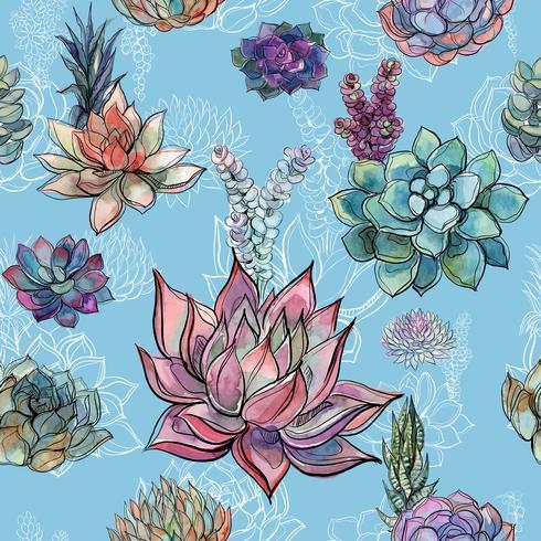 Naadloos patroon met succulents op blauwe achtergrond. Graphics. Waterverf vector