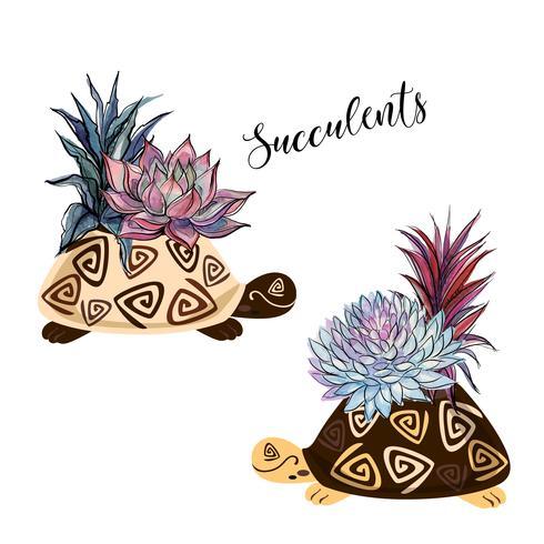Een boeket van vetplanten in een bloempot in de vorm van een schildpad. Afbeeldingen en aquarel vlekken. Vector. vector