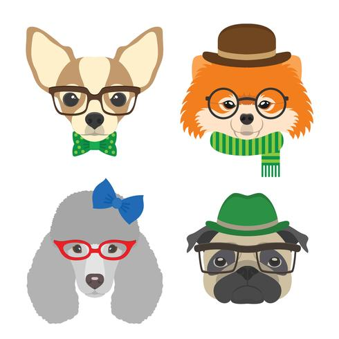 Set van honden portretten. Chihuahua, pug, poedel, Pommeren bril bril en accessoires in vlakke stijl. Vectorillustratie van Hipster-honden voor kaarten, t-shirtdruk, aanplakbiljet, avatars. vector