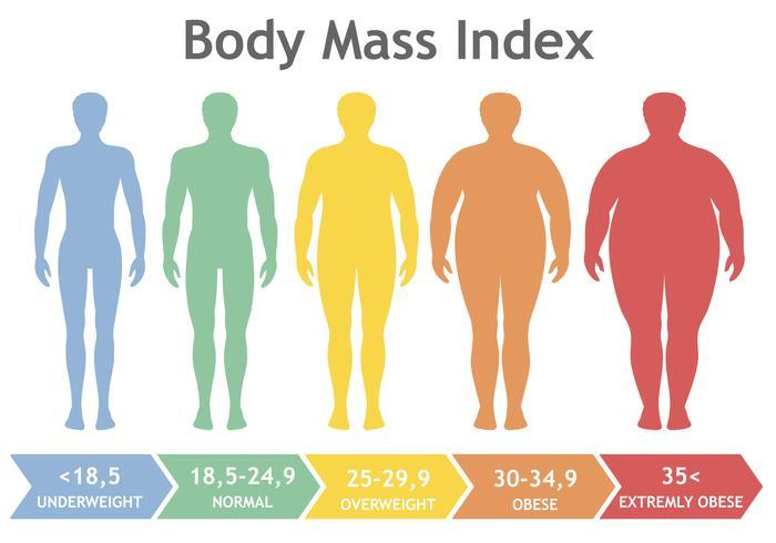 De index vectorillustratie van de lichaamsmassa van te zwaar aan uiterst zwaarlijvig. Mensensilhouetten met verschillende zwaarlijvigheidsniveaus. Mannelijk lichaam met ander gewicht. vector