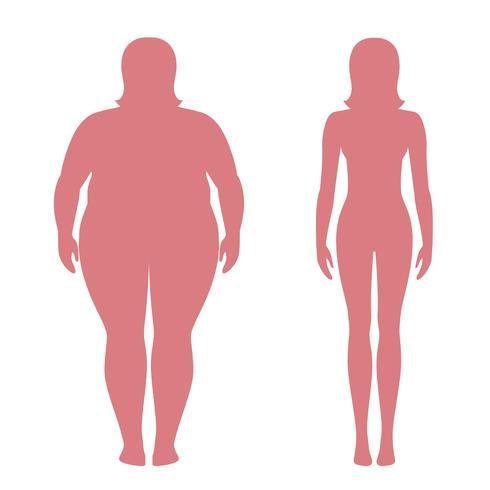 Vectorillustratie van dikke en slanke vrouwensilhouetten. Gewichtsverliesconcept, voor en na. Zwaarlijvig en normaal vrouwelijk lichaam. vector