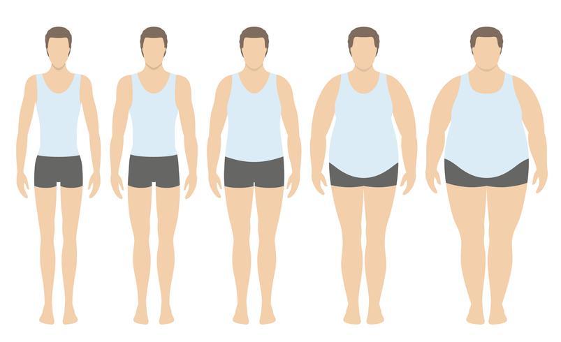 Body mass index vectorillustratie van ondergewicht tot extreem zwaarlijvig in vlakke stijl. Man met verschillende zwaarlijvigheidsgraden. Mannelijk lichaam met ander gewicht. vector