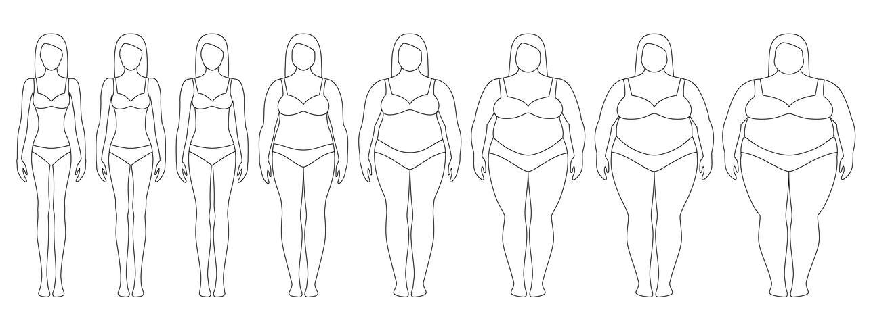 Vectorillustratie van vrouwensilhouetten met verschillend gewicht van anorexie aan uiterst zwaarlijvig. Body mass index, gewichtsverlies concept. vector