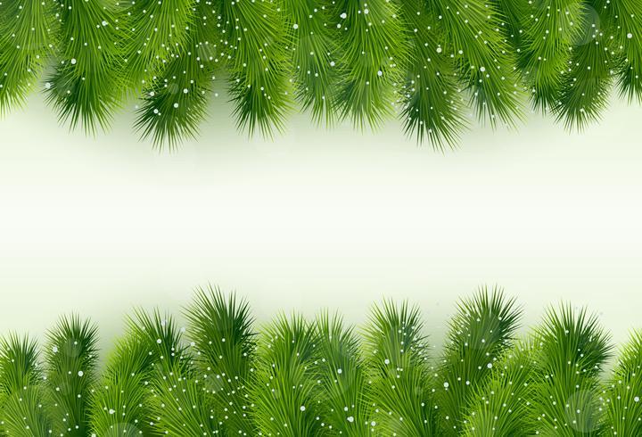Kerstgroet met fir tree vector