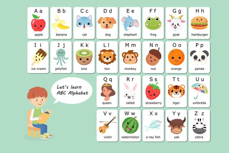 Kawaii Engelse woordenschat en alfabetflitskaartvector voor jonge geitjes helpen het leren en onderwijs in kleuterschoolkinderen. vector