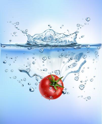 verse groenten spatten in blauwe helder water splash gezond voedsel dieet versheid concept geïsoleerd witte achtergrond. Realistische vectorillustratie. vector