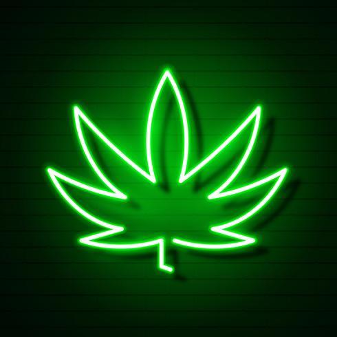Medicinale Cannabis Logo Blad Gloeiend Neonteken. vector