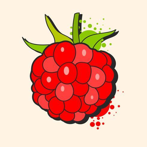 Raspberry schets Vector klaar voor uw ontwerp, wenskaart