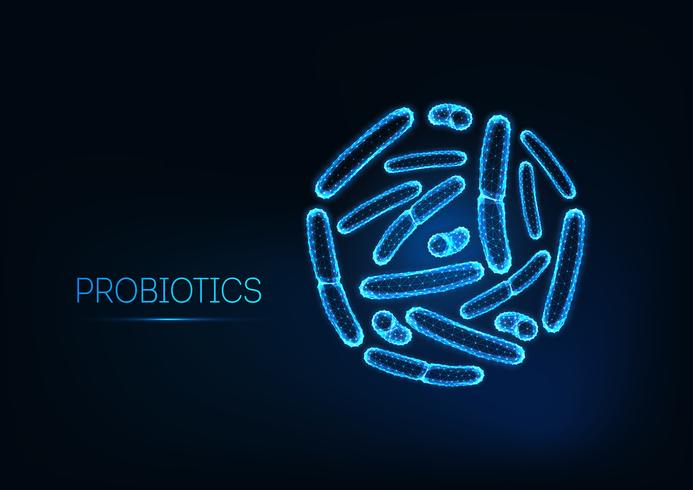 Probiotica onder de microscoop. Gram-positieve bacteriën, bacillen. Normale darmflora, bifidobacterium. vector