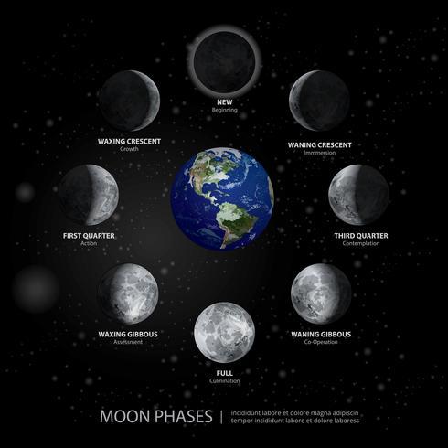 Bewegingen van de Maan Fasen Realistische vectorillustratie vector