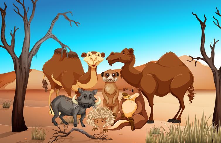 Wilde dieren in het savanneveld vector