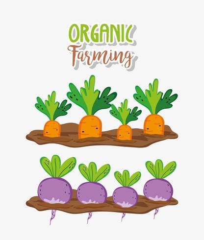 Biologische landbouw tekenfilms vector
