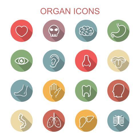 orgel lange schaduw pictogrammen vector