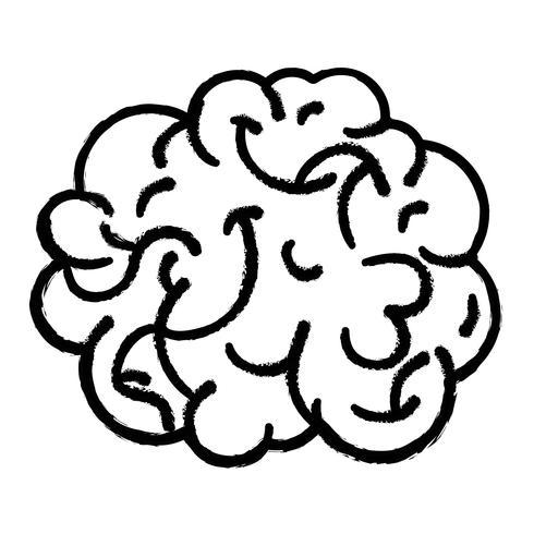 figuur menselijk brein anatomie om creatief en intellect vector