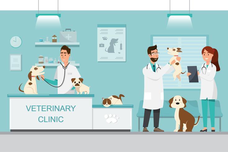 Dierenarts en arts met hond en kat op teller in dierenartskliniek vector