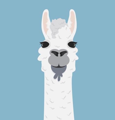 Alpaca lama portret vectorillustratie vector