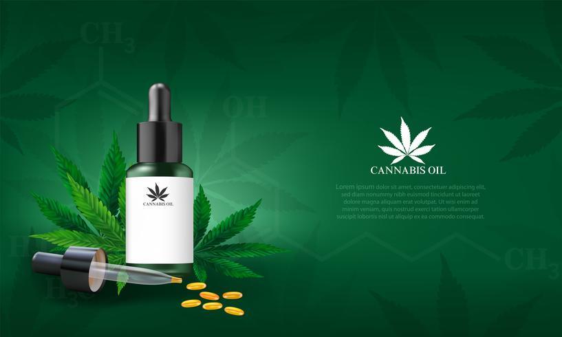 Cannabidiol olie CBD vector
