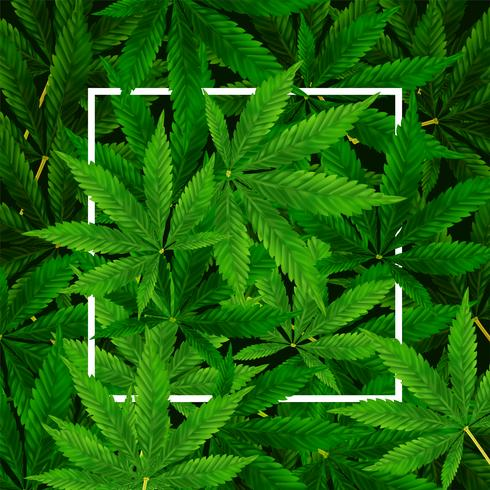 Marihuana of Cannabis Leaf-achtergrond vector