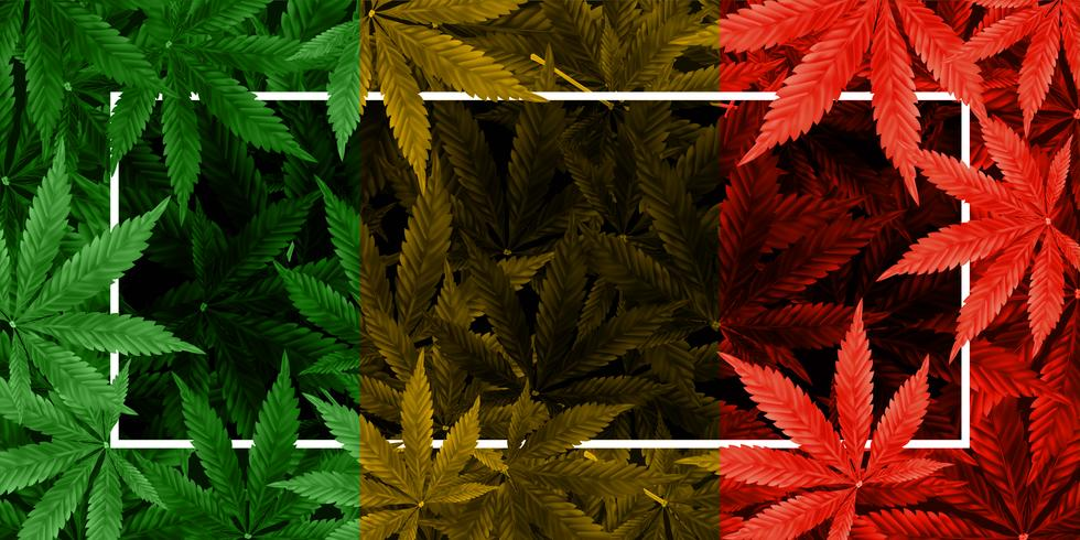 Marihuana of cannabis blad kleur achtergrond vector