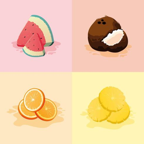 Set van fruit vector