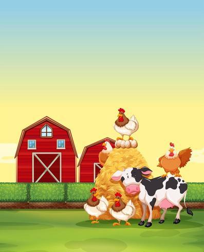 Boerderijdieren die op de boerderij wonen vector