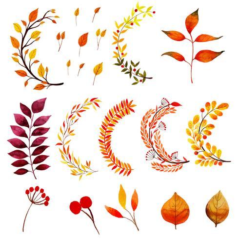 Mooie aquarel herfstbladeren collectie vector