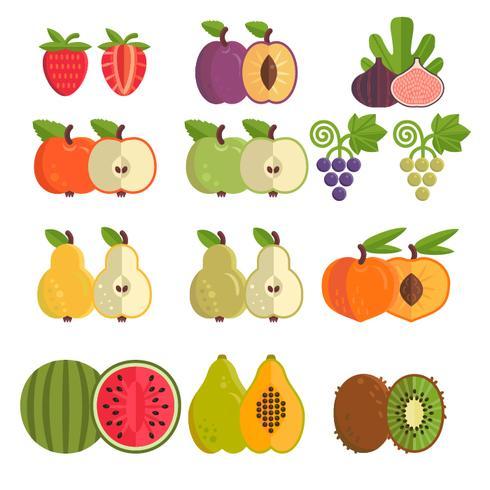 Verzameling van verschillende vruchten vector