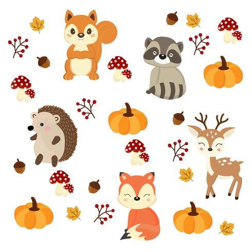 Leuke bosdieren met elementen van de herfst vector